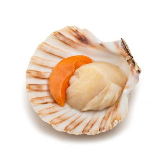 GOLDEN 1/2 SHELL SCALLOP 6-7CM (500GX20PKT)