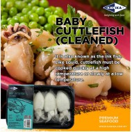 KANIKA WHOLE CLEANED BABY CUTTLEFISH 10/20 (250G X 30TRAY)