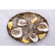 FROZEN 1/2 SHELL OYSTER 10/12 (+/-12pcs)