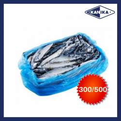 Frozen Saba Mac 300/500 (20kg/carton)
