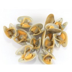 BOILED YELLOW CLAM MEAT IQF/10 (1KG X 10PKT)